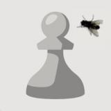 chessplayer9030