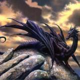 DragonJoey3