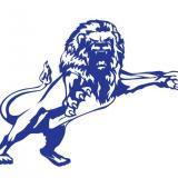 Lion01955