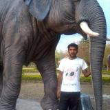 Shrikant9595