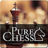 hadi_chess