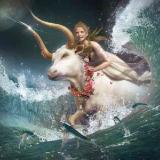 White_Bull