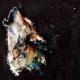 Lightning-Wolf