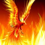 phoenix_2008