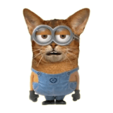 MinionCat