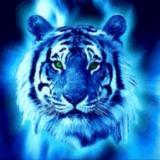 Tigercub321