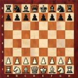 Chess_fighter_2020