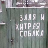 Ochen_Zlaya