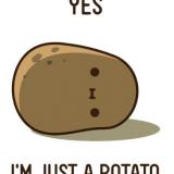 potato08