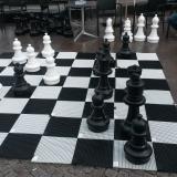 chessfreak36