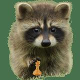 Danila_chess