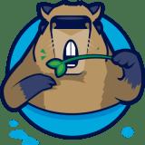 SaoPauloCapybaras