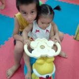 phamgiahung5