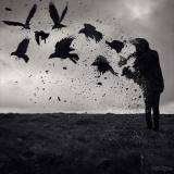 Wolfbird