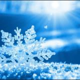 WinterMint34
