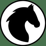 Knight_Chess