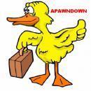 apawndown