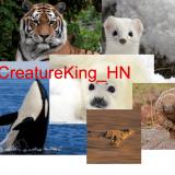CreatureKing_HN