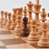 ChessDude009