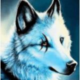 WolfGirl8272