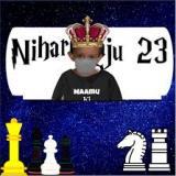 Nihar_Raju_23
