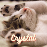 Crystal9431