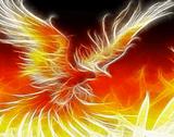 phoenixFire2001
