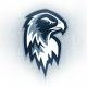 Icehawk3248