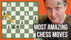 The Most Amazing Chess Moves: Endgame Brilliance