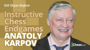 Karpov's Most Instructive Chess Endgames