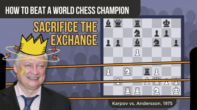 How To Beat A World Chess Champion: Karpov vs Andersson