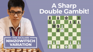 The Sicilian Nimzowitsch: A Sharp Double Gambit!