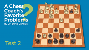 A Chess Coach's Favorite Problems: Test 2