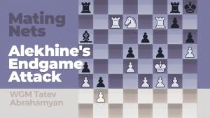 Mating Nets: Alekhine's Endgame Attack